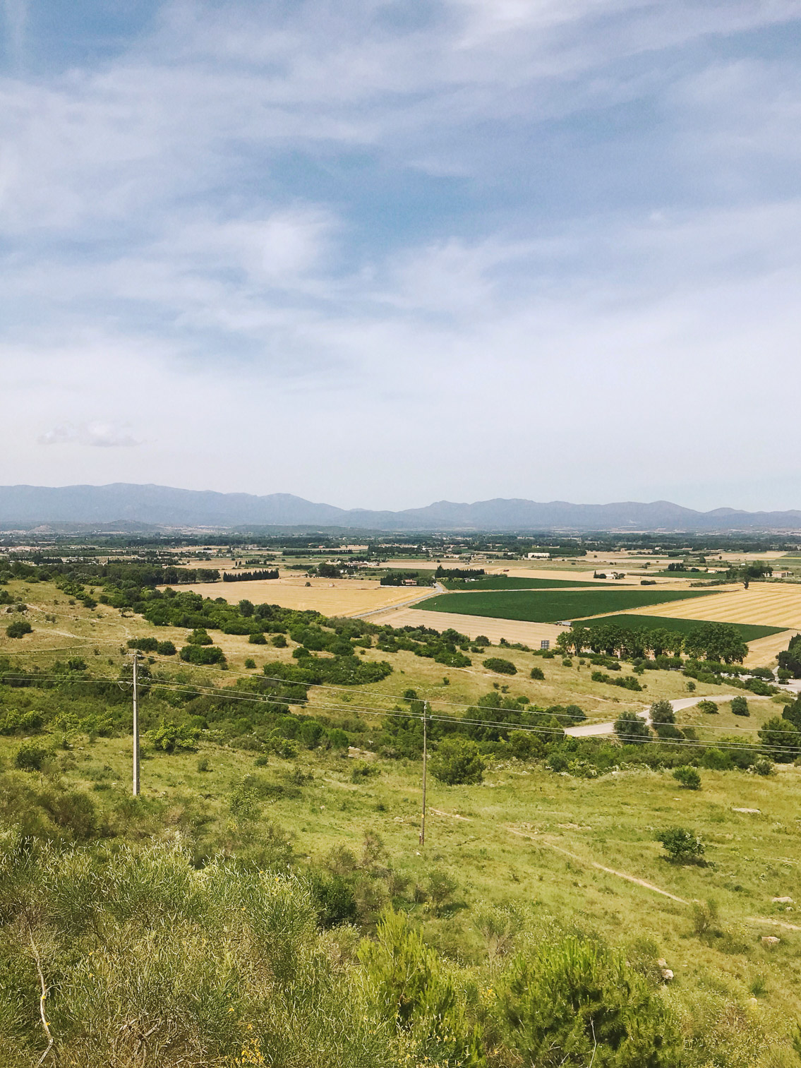 Empordà views - The cat, you and us