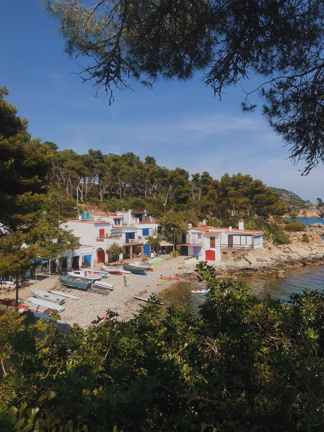 S'Alguer Costa Brava - The cat, you and us