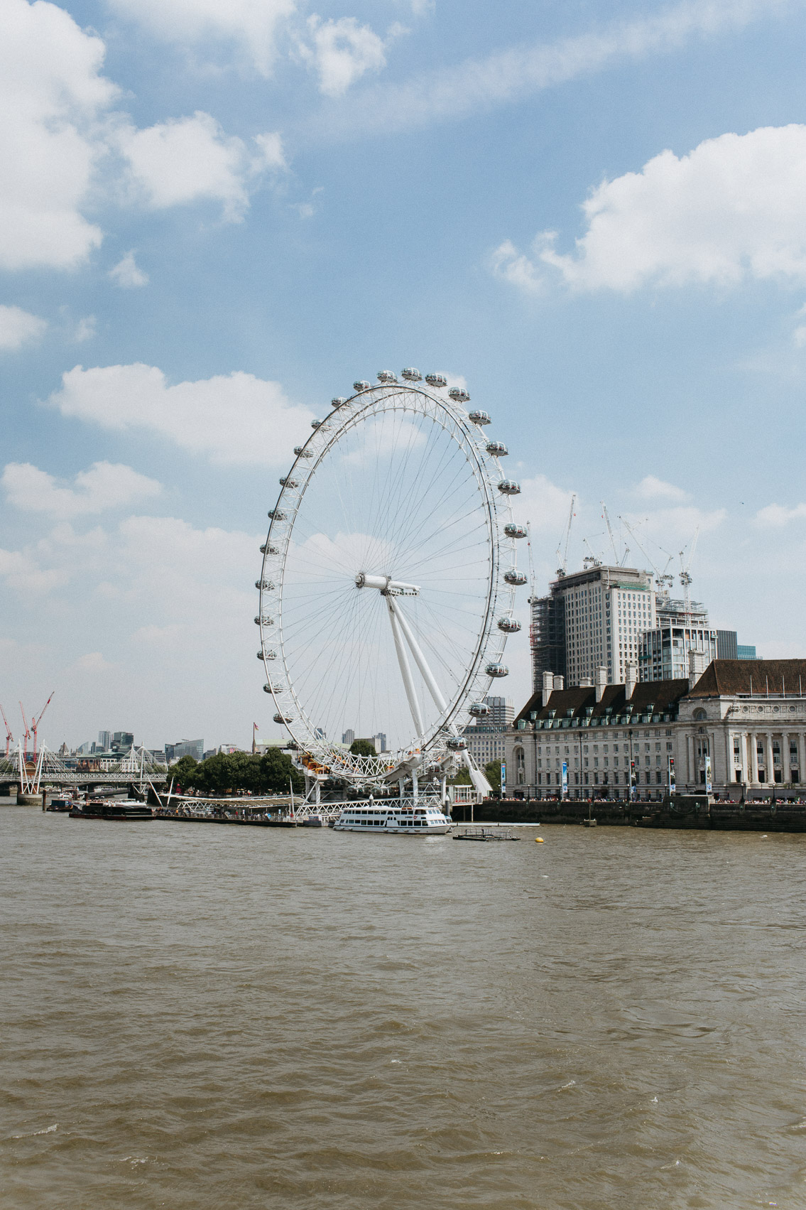 London eye - The cat, you and us