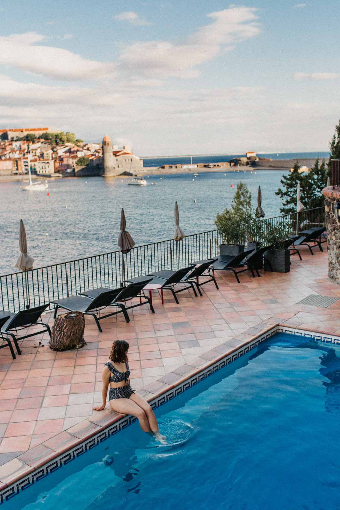 Le relais du trois mas Collioure - The cat, you and us
