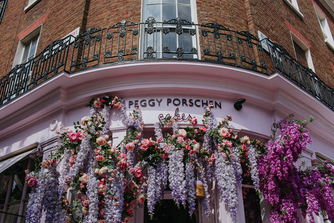 Peggy Porschen - The cat, you and us