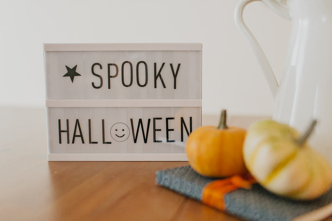 Halloween subtle cute home decor - The cat, you and us