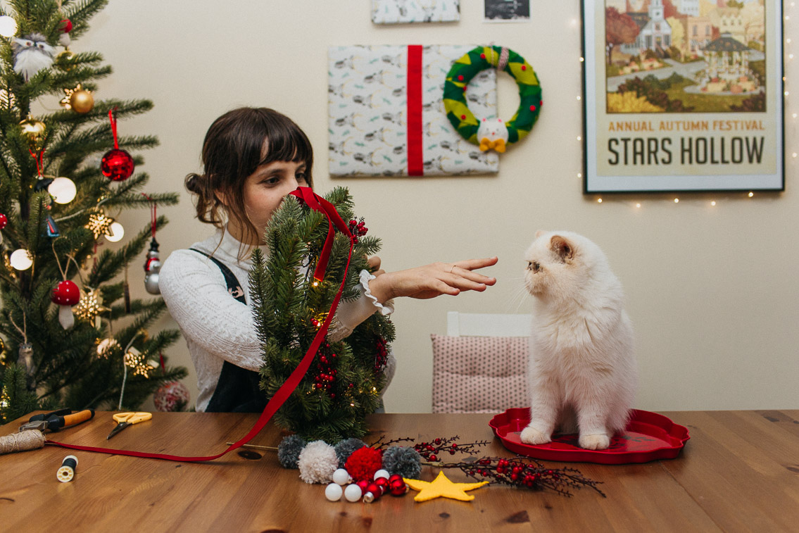 Christmas home: our super easy DIY wreath - The cat, you and us