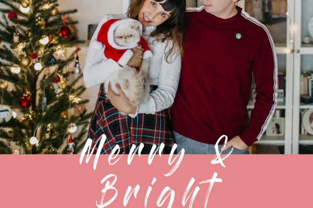 Merry Christmas 2018 - The cat, you and us