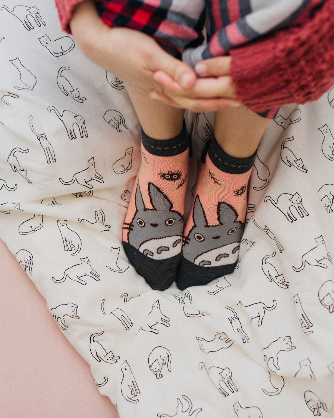 Totoro socks & cat duvet - The cat, you and us