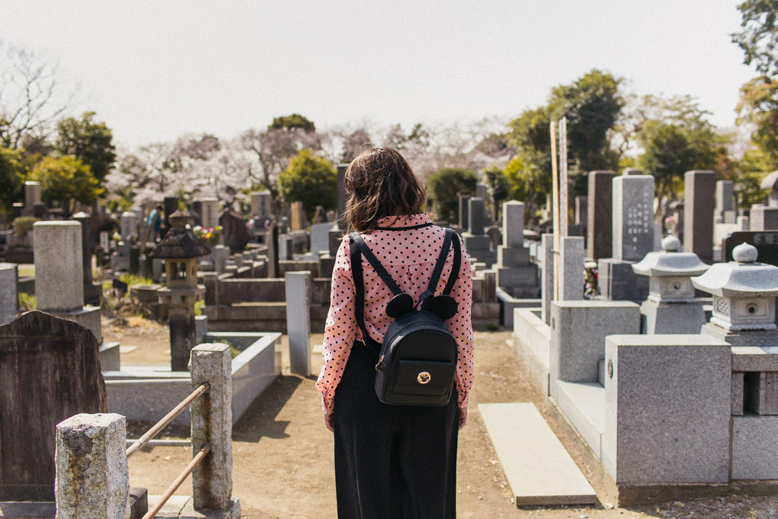 Yanaka Cemetery park - The cat, you and us