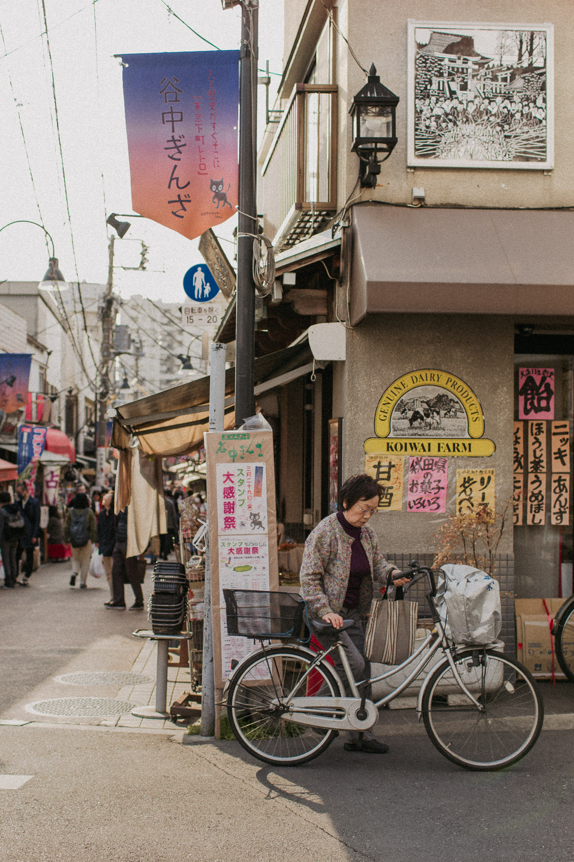 Yanaka Ginza - The cat, you and us