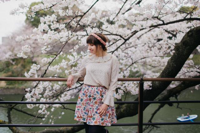 Chidorigafuchi park sakura season - The cat, you and us