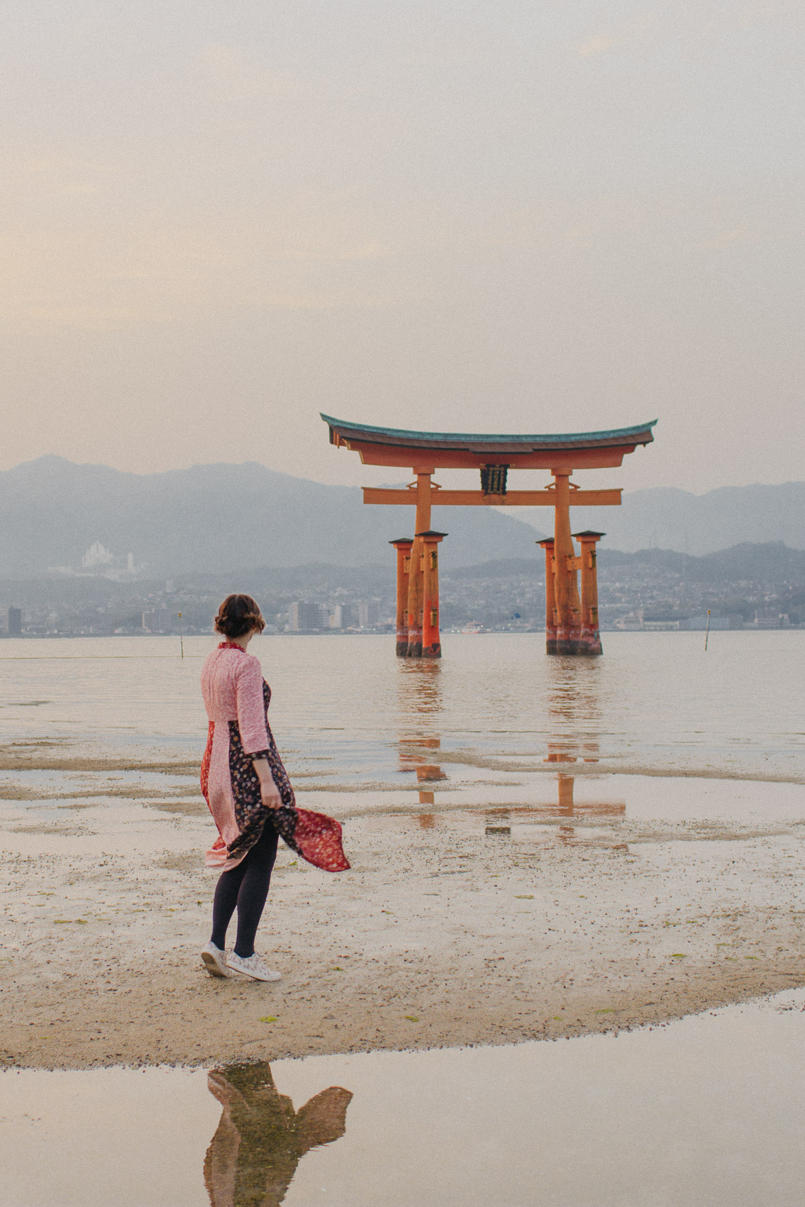 Sunset Miyajima floating torii - The cat, you and us