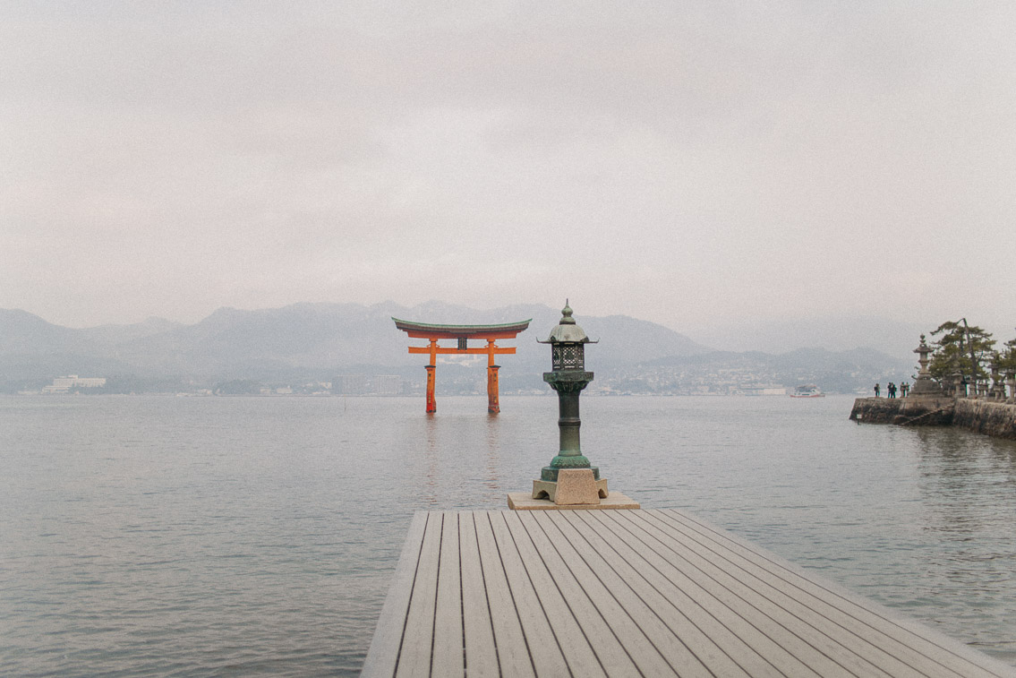 Itsukushima shrine Miyajima - The cat, you and us