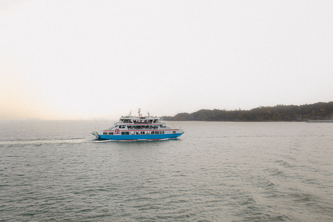 Ferry to Miyajima - The cat, you and us