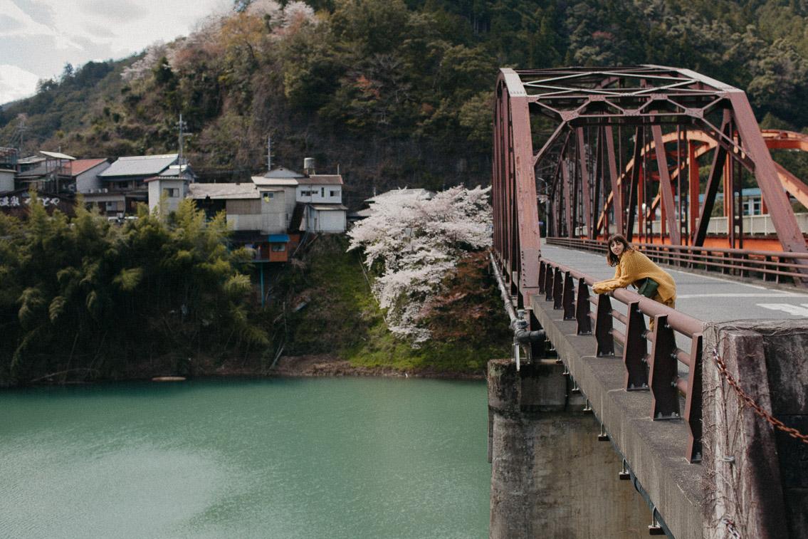Totsukawa onsen in Wakayama - The cat, you and us