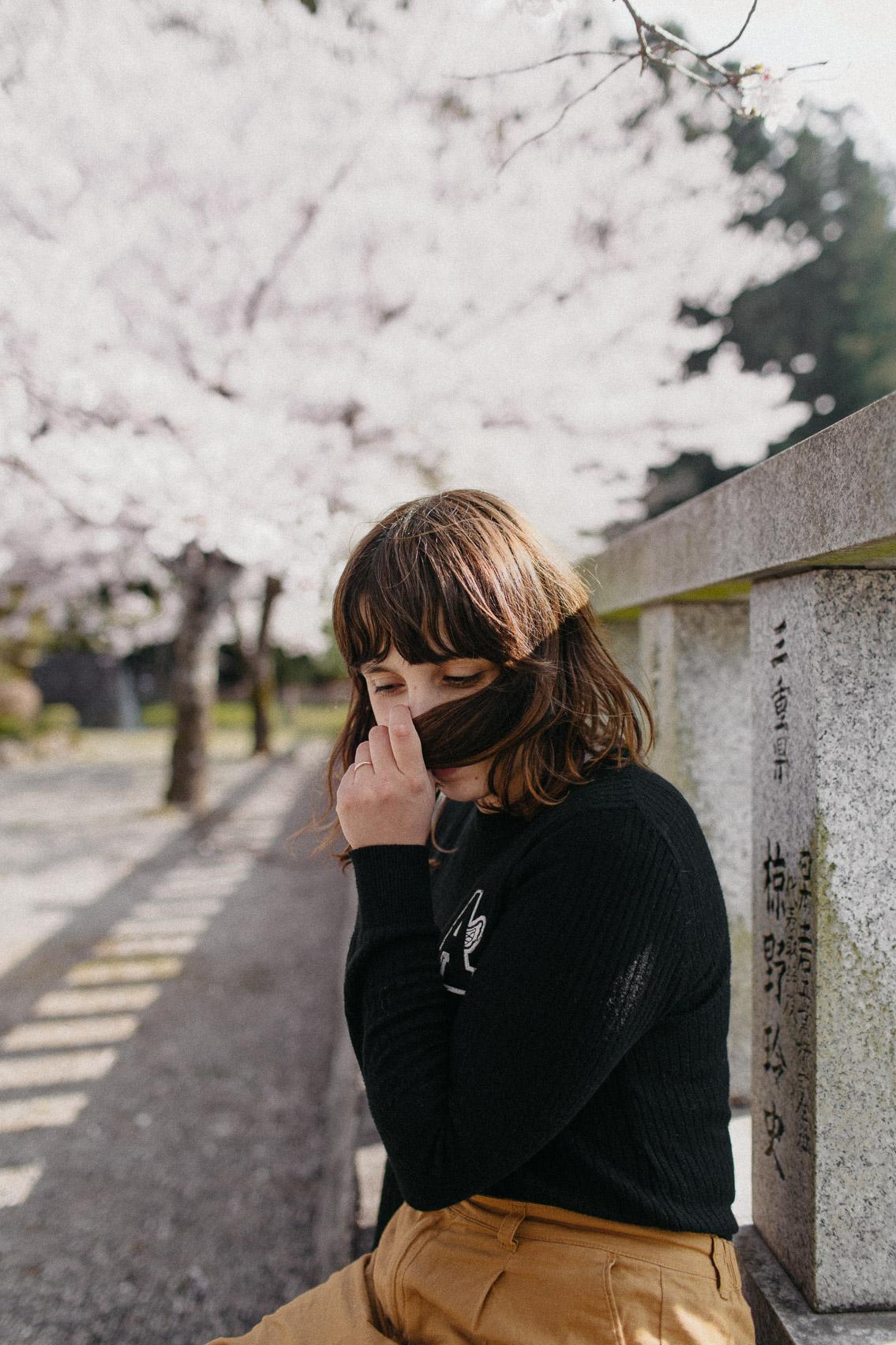 Hongu Taisha Otorii sakura - The cat, you and us