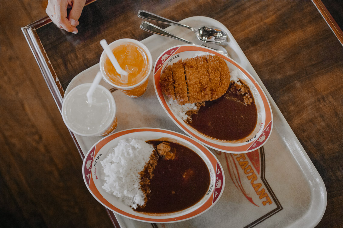 Tokyo Disneyland Katsu curry don - The cat, you and us