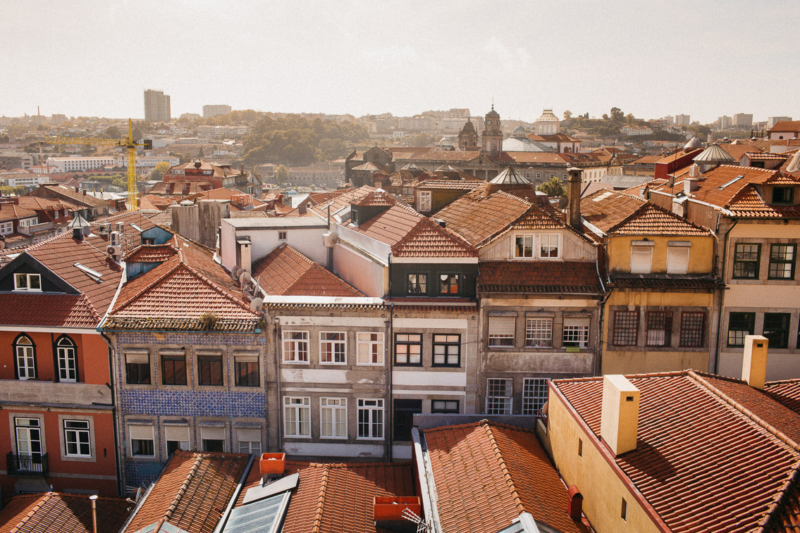 Porto views - The cat, you and us