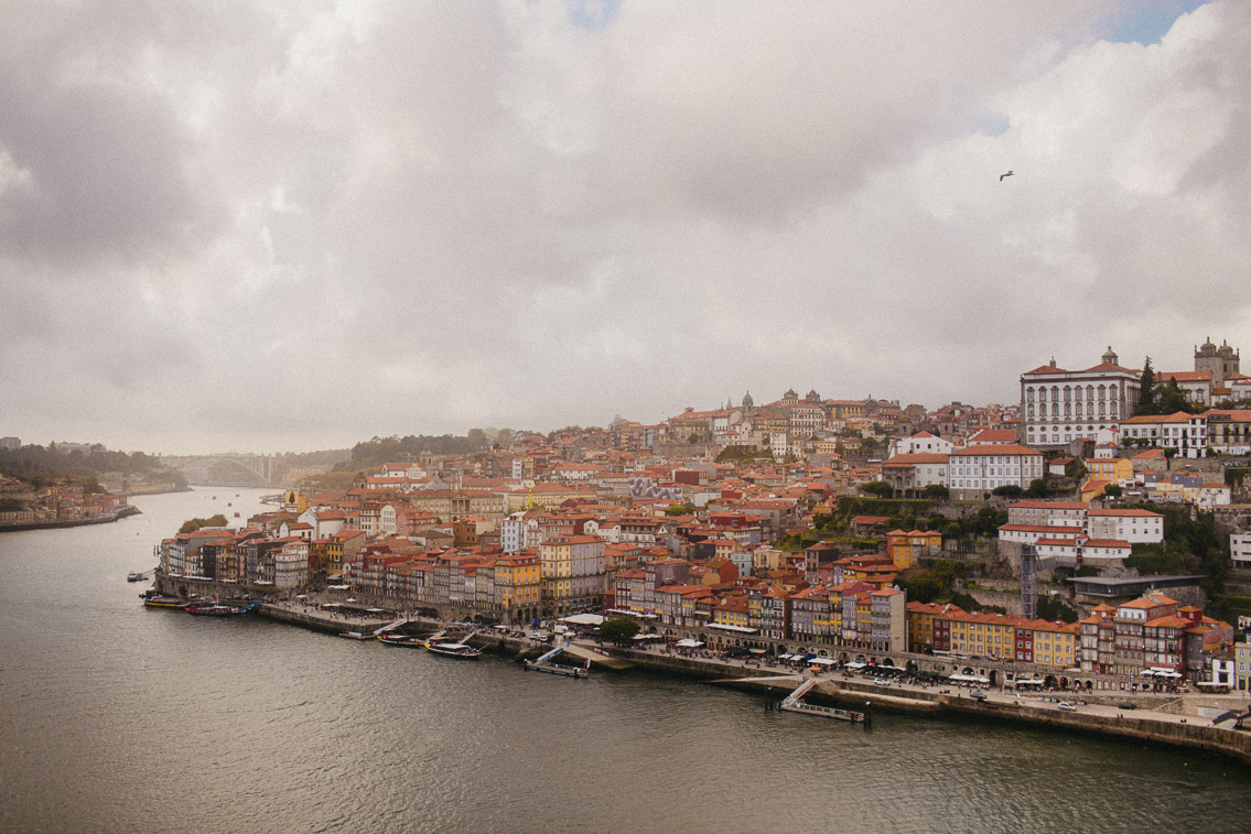 Ponte D Luis Porto - The cat, you and us
