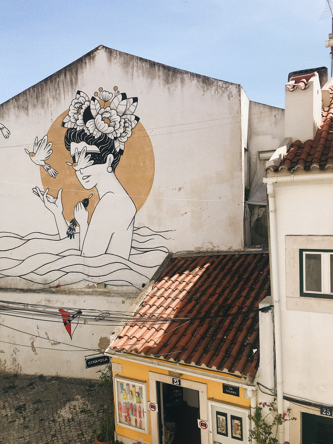 Lisboa - The cat, you and us