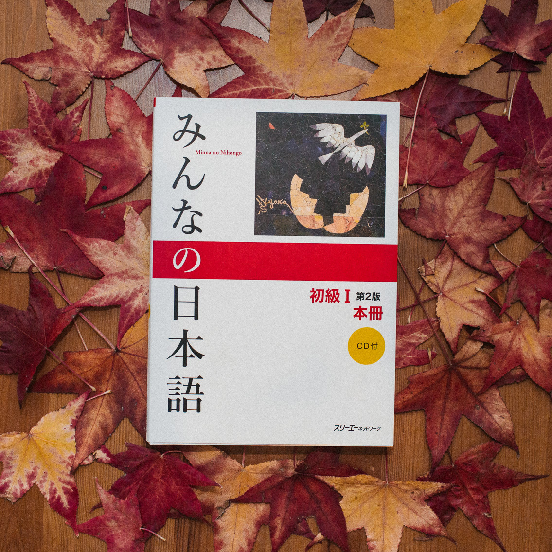Learning Japanese autumn vibes - The cat, you and us