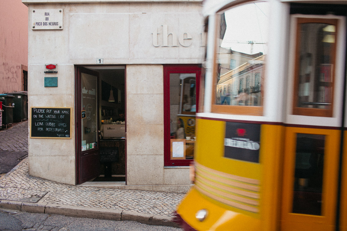The mill Lisboa - The cat, you and us