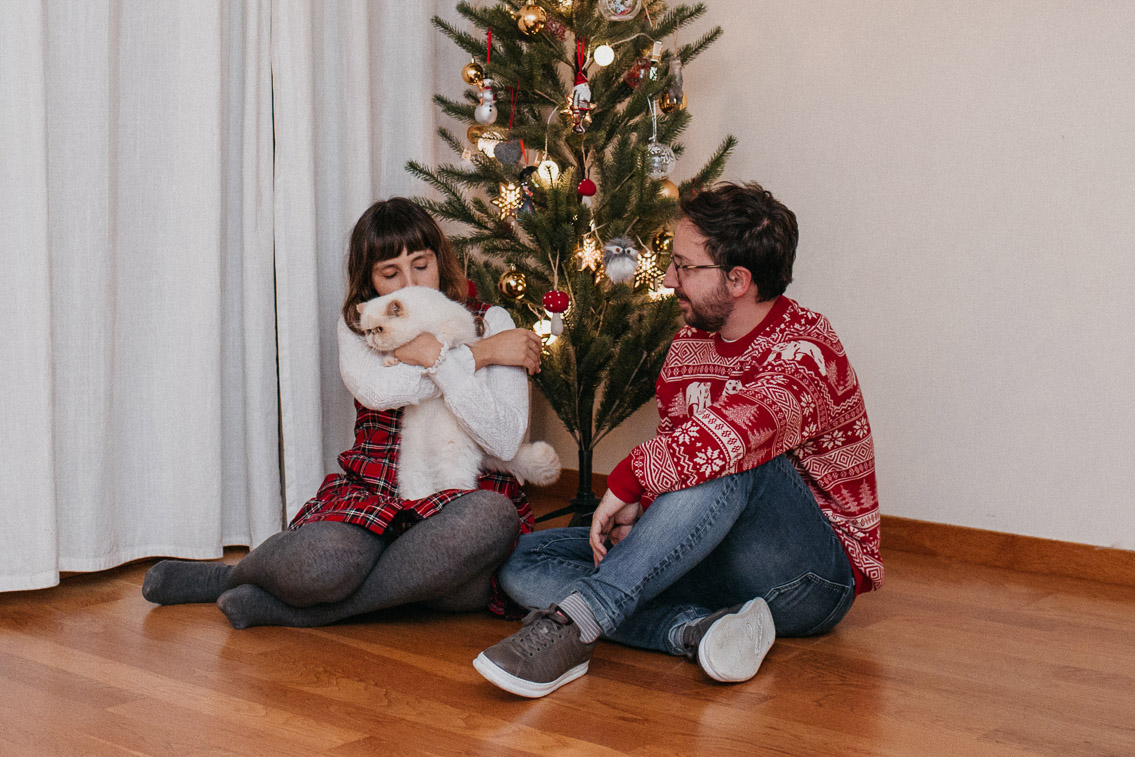 Christmas 2019 postcard - The cat, you and us