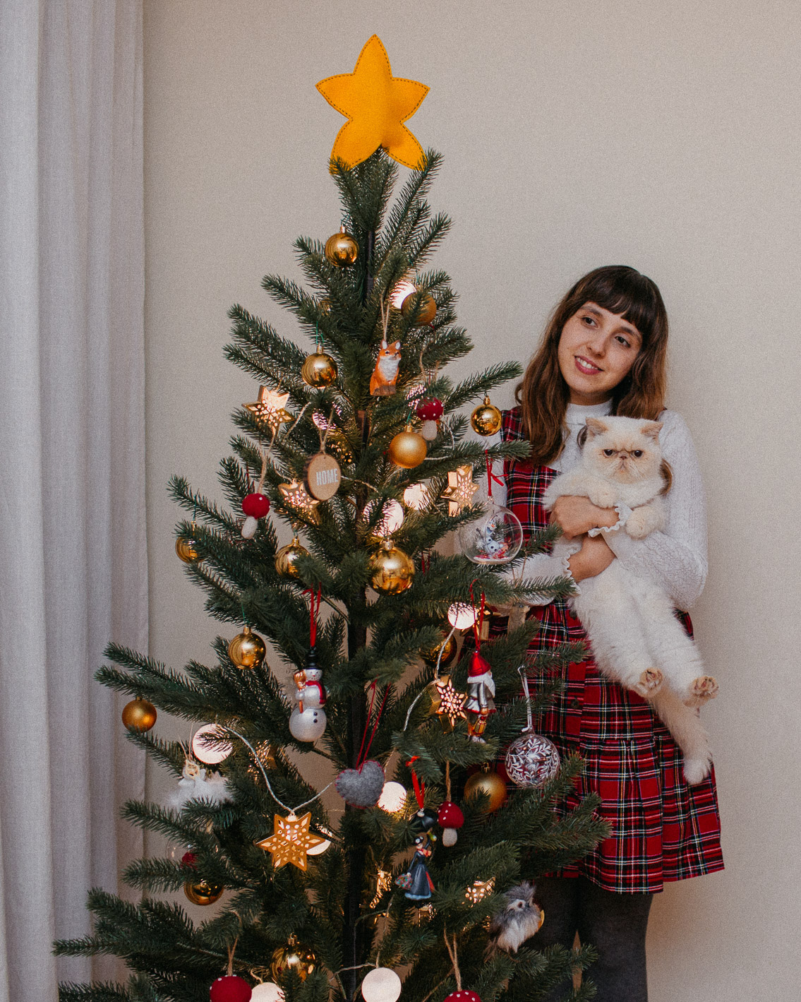 Christmas day - The cat, you and us