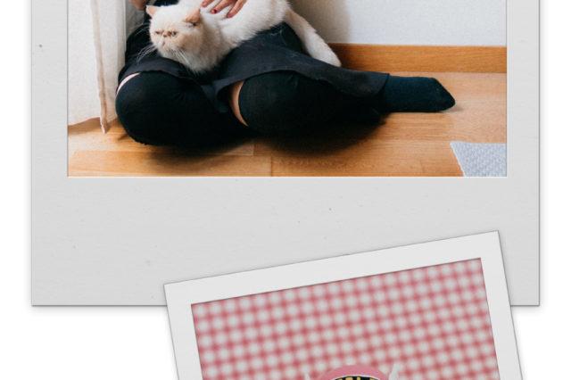 Dr Slump Arale Figure rise Mechanics Bandai - The cat, you and us