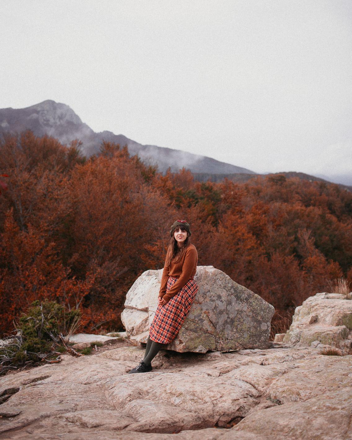 Montseny Turó de Murou fall colors (otoño, tardor) - The cat, you and us