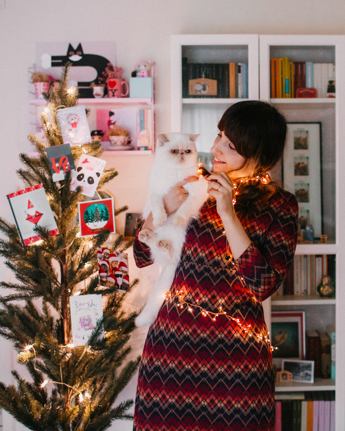 Christmas 2020 - The cat, you and us