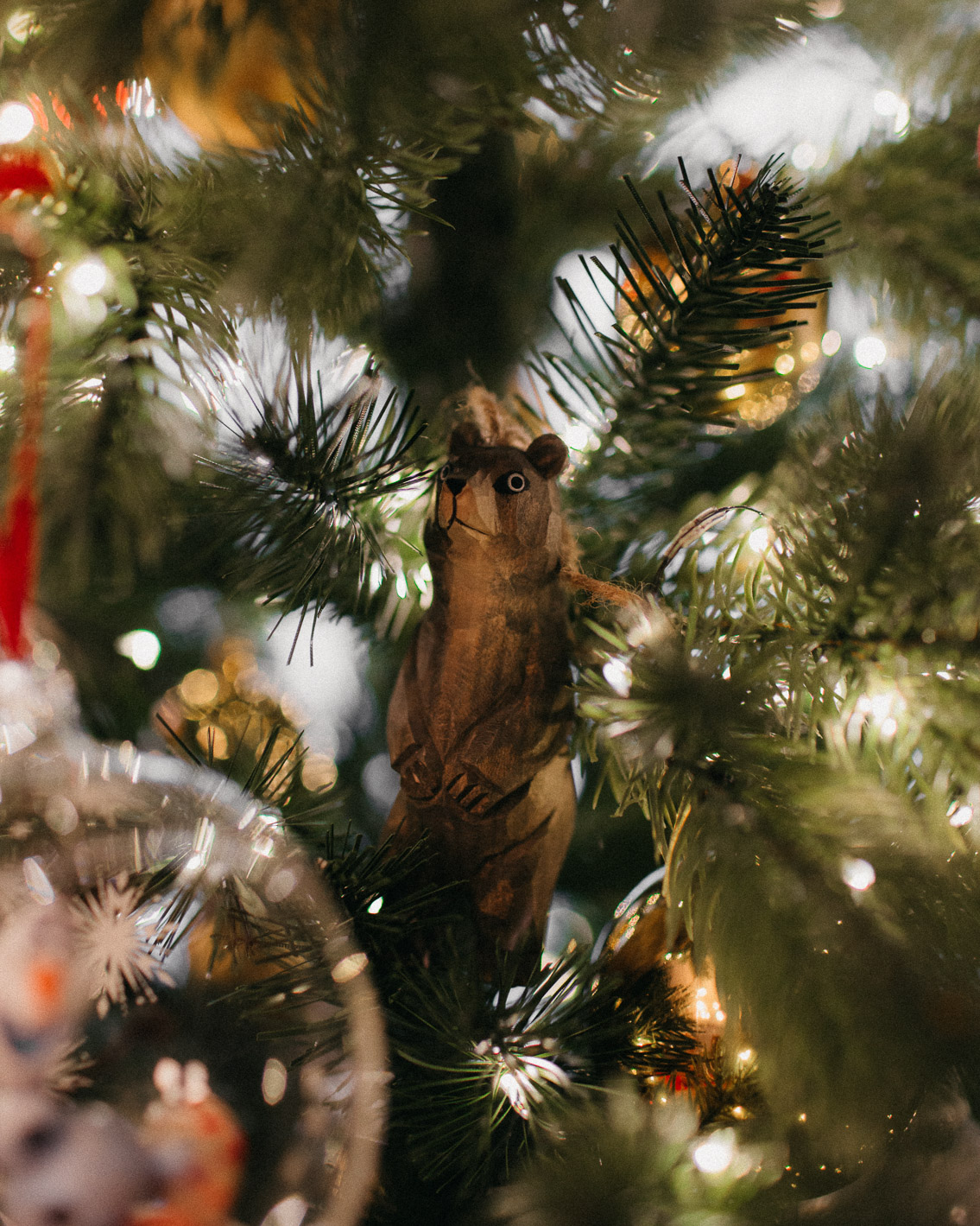 Christmas 2020 home decor - The cat, you and us