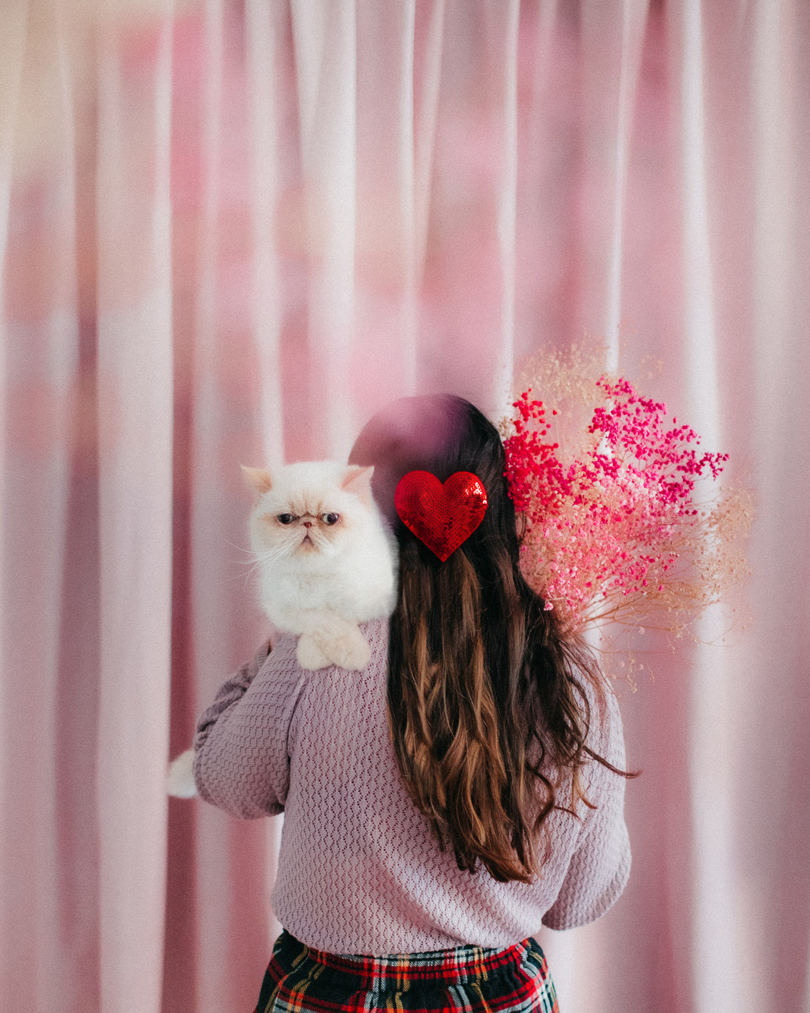 Pink curtains, pastel home - The cat, you and us